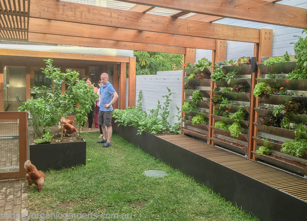 Lawn, chooks, seating, rain garden wicking beds, vertical aquaponics, vertical compost edible garden system, car parking...how much can you fit into a space!!